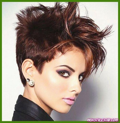 Photo de 15 coiffures à poil court